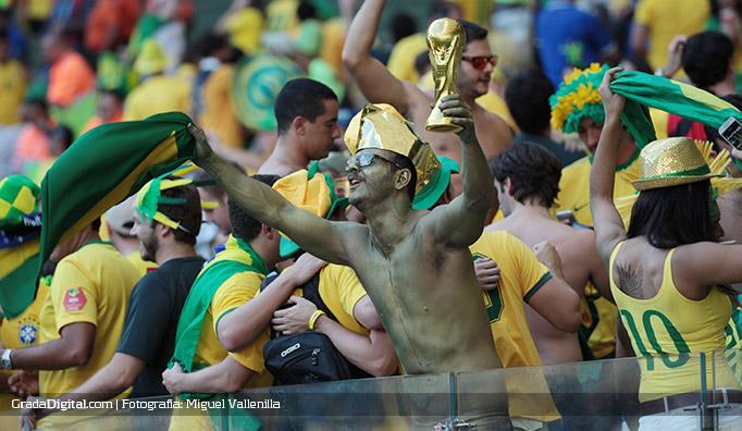 aficionado_brasil_chile_28062014